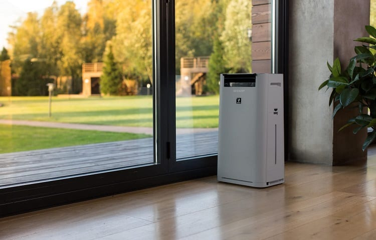 purifier in living room